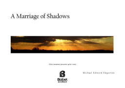 A Marriage of Shadows image